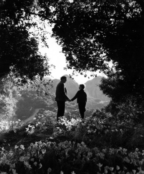 walter pidgeon & roddy mcdowall - how green was my valley 1941