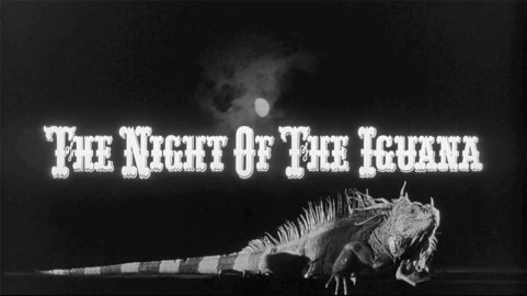 nightoftheiguana